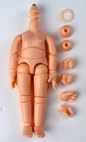 11cm body
